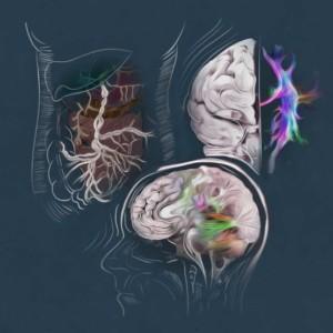Logo do grupo Sistemas Neurobiológicos Complexos