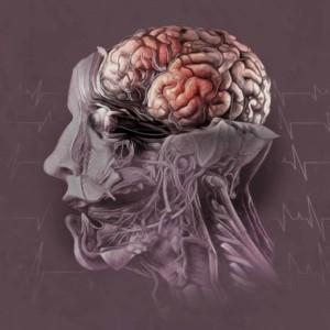 Logo do grupo Transtornos & Doenças do Cérebro