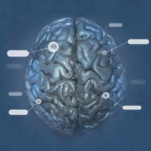 Logo do grupo Neuroanatomia