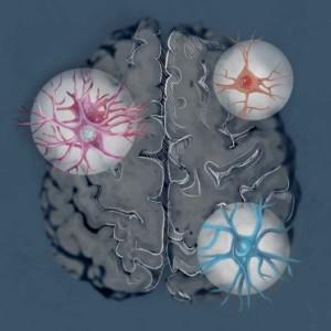Logo do grupo Células do Cérebro