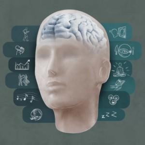 Logo do grupo Saúde & Alta Performance Cerebral